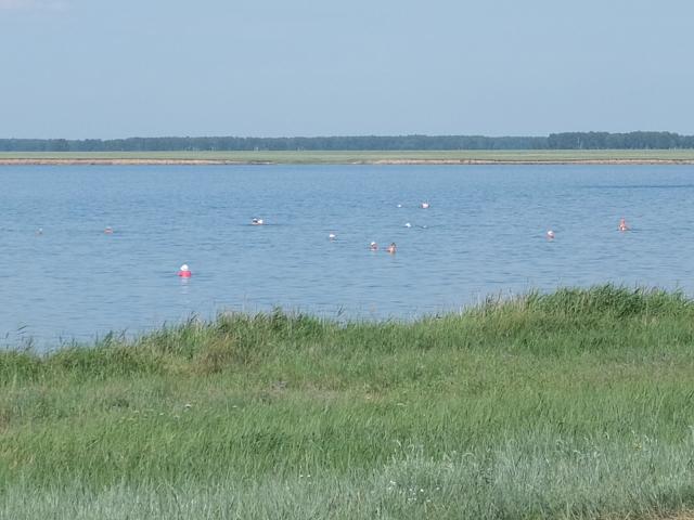 Соленое озеро Горькое фото