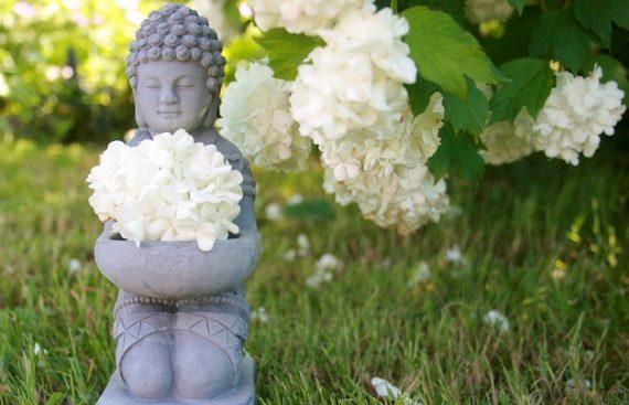 Через медитации к лучшей жизни фото