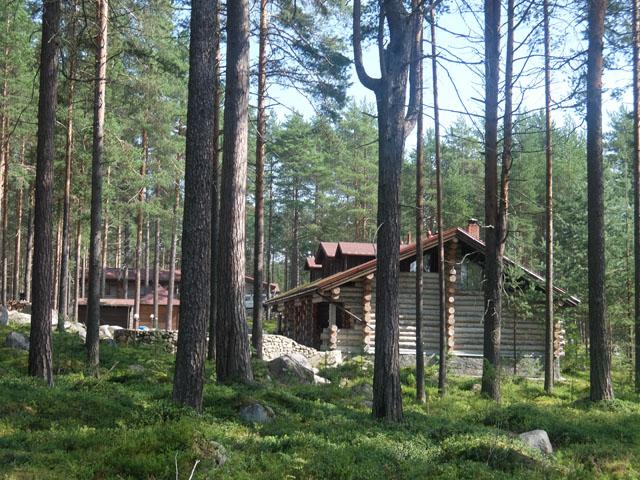 В деревянных комфортабельных домиках в Карелии фото