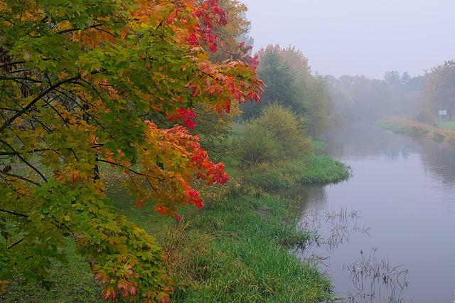 Природа как источник вдохновения фото