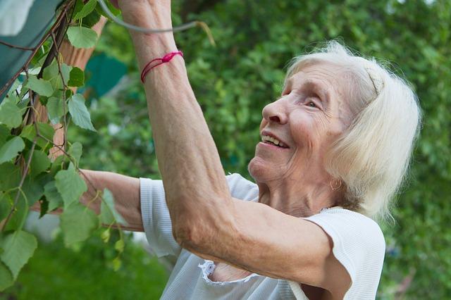 рецепт бодрости бабушки фото